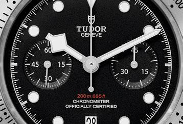 Tudor-2